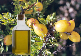 Аргановое масло для волос — применение, советы и отзывы